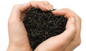 Propiedades y beneficios del té negro
